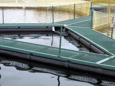 Садок для рыбы: какие рыболовные садки лучше, металлический 55